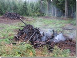 09-16-07 stump piles burn down 004